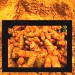Turmeric, the wonder spice