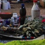 Why drink Ayahuasca?  What to expect from it.